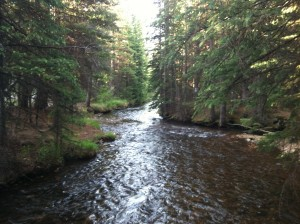 View up stream on Kenosha Pass run