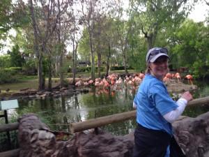 Colfax Denver Zoo