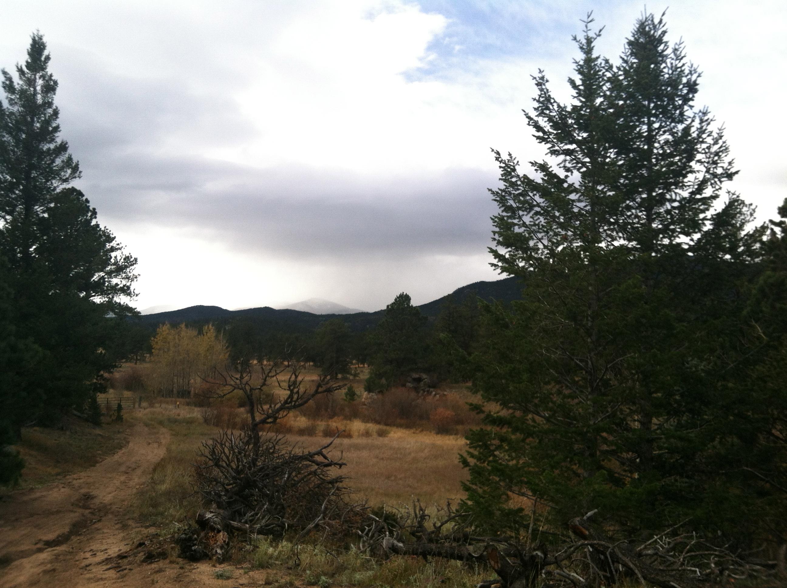 Elk Ranch trails